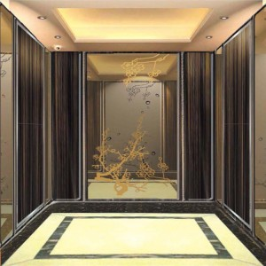 Mirror Etched Titanium Stainless Steel Sheet For Elevator decorative steel sheet