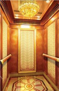 custom  stainless steel  sheet decorate elevator