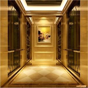 custom stainless steel sheet decorative elevator